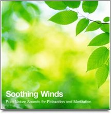 Soothing Winds - Theta Binaural